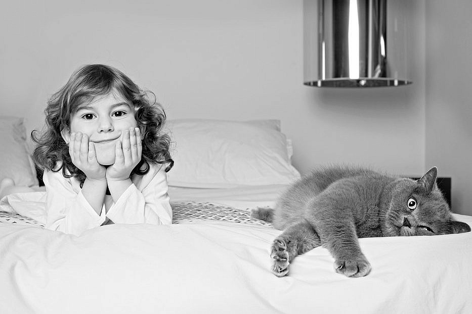 little girl is lying on the bed with her grey British cat London family photoshoot
